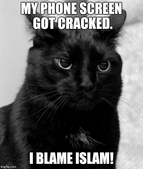 Black cat pissed | MY PHONE SCREEN GOT CRACKED. I BLAME ISLAM! | image tagged in black cat pissed | made w/ Imgflip meme maker