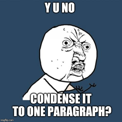Y U No Meme | Y U NO CONDENSE IT TO ONE PARAGRAPH? | image tagged in memes,y u no | made w/ Imgflip meme maker