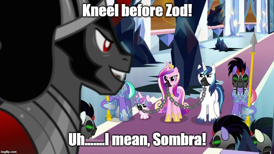 Sombra's confusion |  Kneel before Zod! Uh.......I mean, Sombra! | image tagged in my little pony,superman,general zod | made w/ Imgflip meme maker