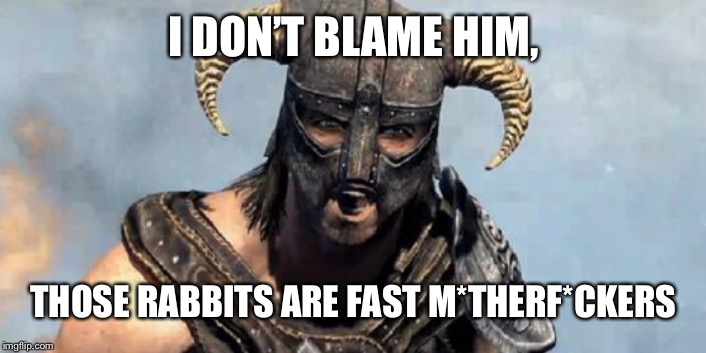 Skyrim | I DON'T BLAME HIM, THOSE RABBITS ARE FAST M*THERF*CKERS | image tagged in skyrim | made w/ Imgflip meme maker