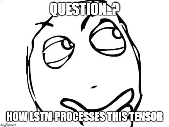 Question Rage Face Meme |  QUESTION..? HOW LSTM PROCESSES THIS TENSOR | image tagged in memes,question rage face | made w/ Imgflip meme maker