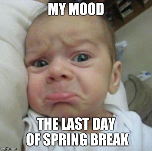 sad face | MY MOOD THE LAST DAY OF SPRING BREAK | image tagged in sad face | made w/ Imgflip meme maker