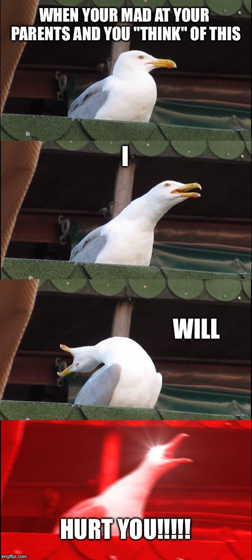 "Inhaling Seagull Meme | WHEN YOUR MAD AT YOUR PARENTS AND YOU ""THINK"" OF THIS I WILL HURT YOU!!!!! 