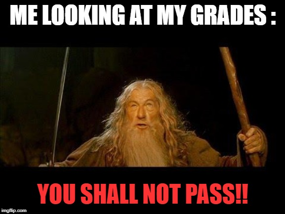 You shall not pass | ME LOOKING AT MY GRADES : YOU SHALL NOT PASS!! | image tagged in you shall not pass | made w/ Imgflip meme maker