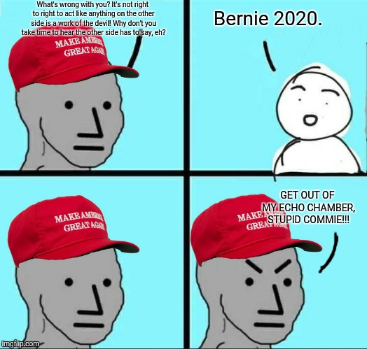 MAGA NPC | What's wrong with you? It's not right to right to act like anything on the other side is a work of the devil! Why don't you take time to hea | image tagged in maga npc,stupid conservatives,conservative hypocrisy,bernie2020,memes,echo chamber | made w/ Imgflip meme maker