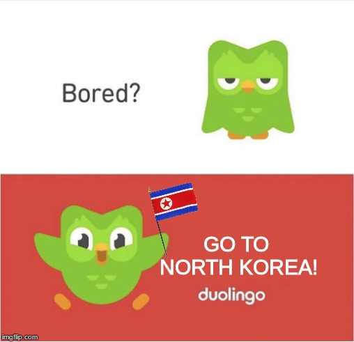Duolingo loves North Korea!!! | GO TO NORTH KOREA! | image tagged in duolingo bored,north korea,duolingo | made w/ Imgflip meme maker