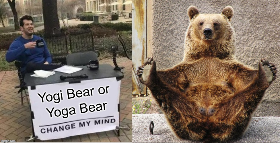 Please, Help Me. I Can't Decide. | Yogi Bear or Yoga Bear | image tagged in vince vance,yoga,bears,yogi bear,change my mind,boo boo | made w/ Imgflip meme maker