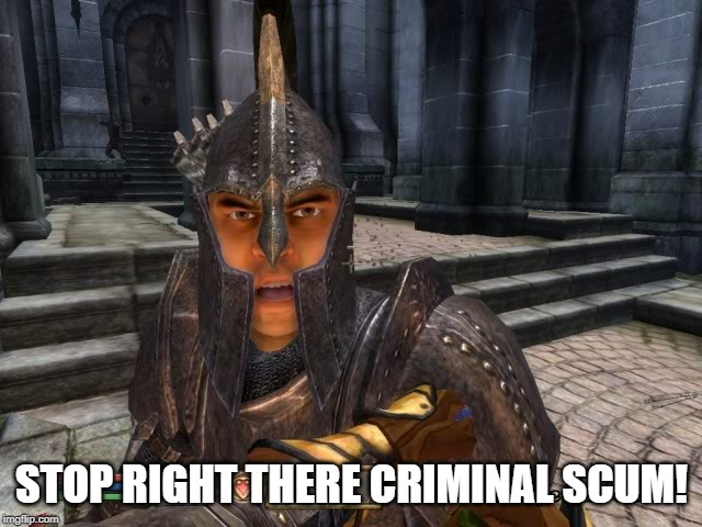 Imperial Guard |  STOP RIGHT THERE CRIMINAL SCUM! | image tagged in imperial guard,oblivion,elder scrolls | made w/ Imgflip meme maker