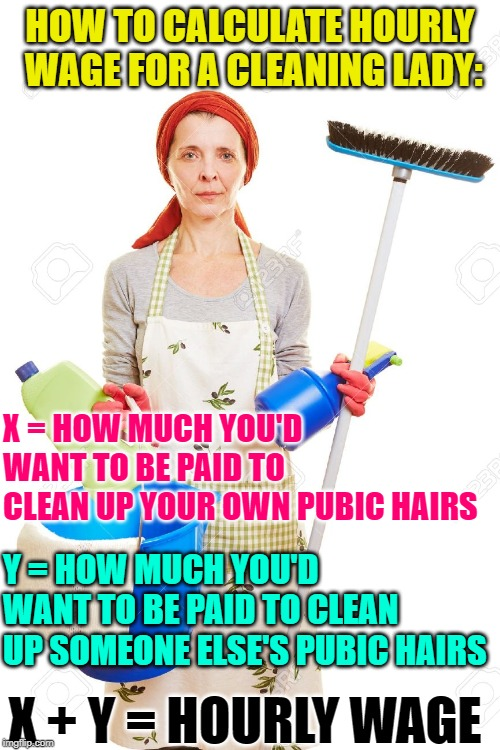 Cleaning Lady Wages | HOW TO CALCULATE HOURLY WAGE FOR A CLEANING LADY: X + Y = HOURLY WAGE X = HOW MUCH YOU'D WANT TO BE PAID TO CLEAN UP YOUR OWN PUBIC HAIRS Y  | image tagged in cleaning,jobs,how to,maid,funny memes,reality check | made w/ Imgflip meme maker