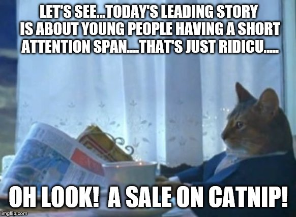 Millennial problems..... |  LET'S SEE...TODAY'S LEADING STORY IS ABOUT YOUNG PEOPLE HAVING A SHORT ATTENTION SPAN....THAT'S JUST RIDICU….. OH LOOK!  A SALE ON CATNIP! | image tagged in memes,i should buy a boat cat,millennials,liberals | made w/ Imgflip meme maker