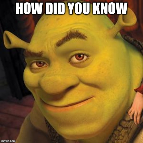Shrek Sexy Face | HOW DID YOU KNOW | image tagged in shrek sexy face | made w/ Imgflip meme maker