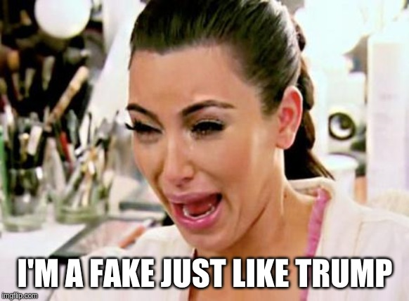 Kim Kardashian | I'M A FAKE JUST LIKE TRUMP | image tagged in kim kardashian | made w/ Imgflip meme maker
