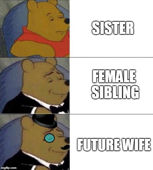 Next Wife | SISTER FUTURE WIFE FEMALE SIBLING | image tagged in winnie the pooh extended | made w/ Imgflip meme maker