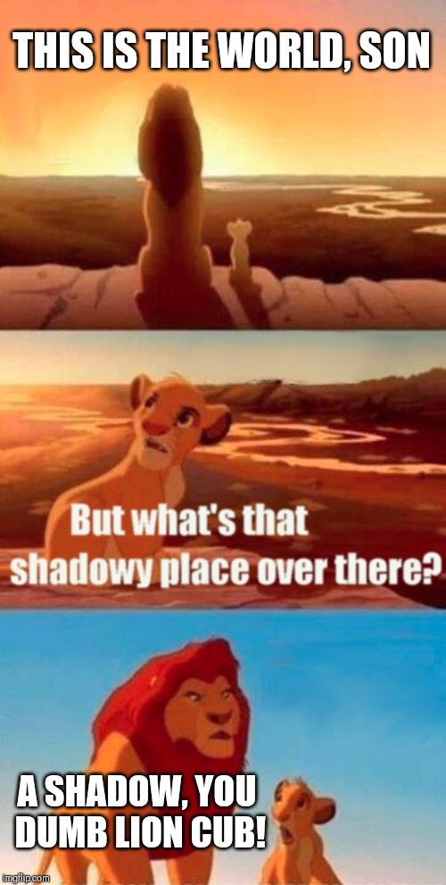 Simba Shadowy Place Meme | THIS IS THE WORLD, SON A SHADOW, YOU DUMB LION CUB! | image tagged in memes,simba shadowy place | made w/ Imgflip meme maker