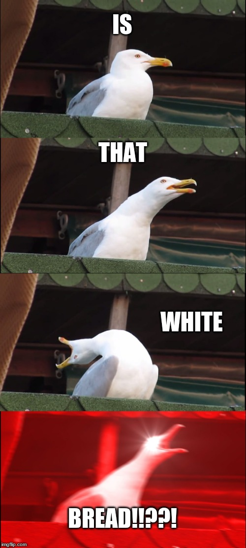 Inhaling Seagull | IS THAT WHITE BREAD!!??! | image tagged in memes,inhaling seagull | made w/ Imgflip meme maker