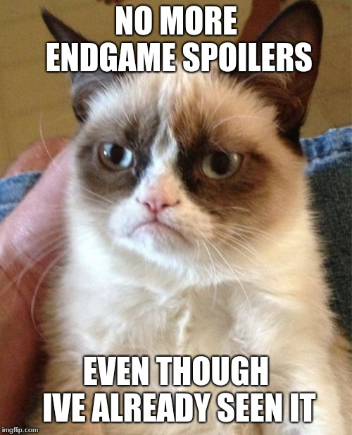 Grumpy Cat | NO MORE ENDGAME SPOILERS EVEN THOUGH IVE ALREADY SEEN IT | image tagged in memes,grumpy cat | made w/ Imgflip meme maker