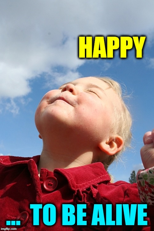 Enjoy the Blessing of Each Day |  HAPPY; ...  TO BE ALIVE | image tagged in vince vance,happy little boy,love of life,being blessed,happiness is,feeling good to be alive | made w/ Imgflip meme maker
