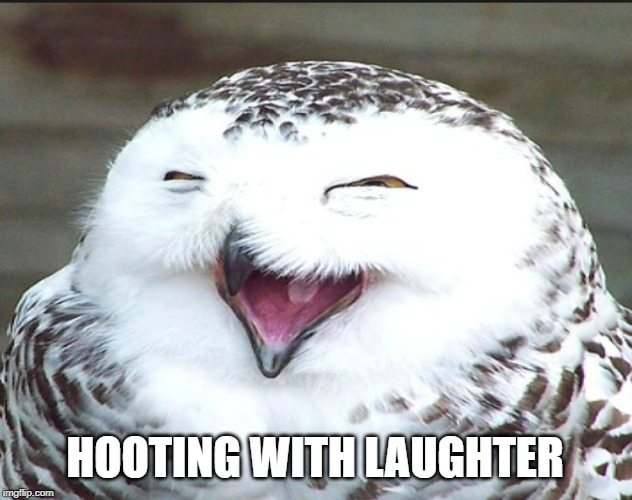 HOOTING WITH LAUGHTER | made w/ Imgflip meme maker