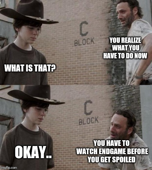 Rick and Carl | YOU REALIZE WHAT YOU HAVE TO DO NOW WHAT IS THAT? YOU HAVE TO WATCH ENDGAME BEFORE YOU GET SPOILED OKAY.. | image tagged in memes,rick and carl | made w/ Imgflip meme maker