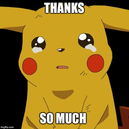 Pikachu crying | THANKS SO MUCH | image tagged in pikachu crying | made w/ Imgflip meme maker