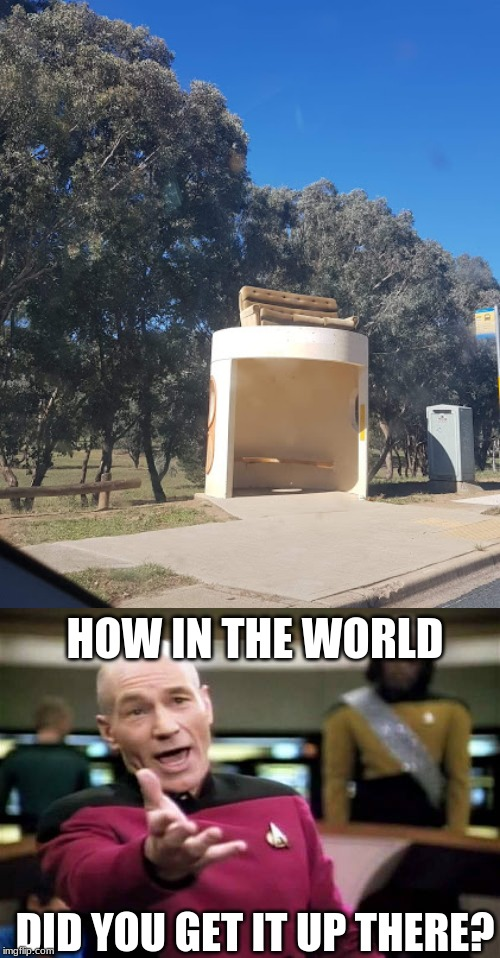 my local bus stop just got an upgrade | DID YOU GET IT UP THERE? HOW IN THE WORLD | image tagged in memes,picard wtf,dank memes,bus stop,bus,meanwhile in australia | made w/ Imgflip meme maker