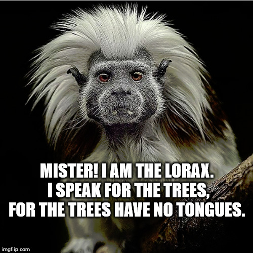 The real Lorax |  MISTER! I AM THE LORAX. I SPEAK FOR THE TREES, FOR THE TREES HAVE NO TONGUES. | image tagged in lorax,dr suess | made w/ Imgflip meme maker