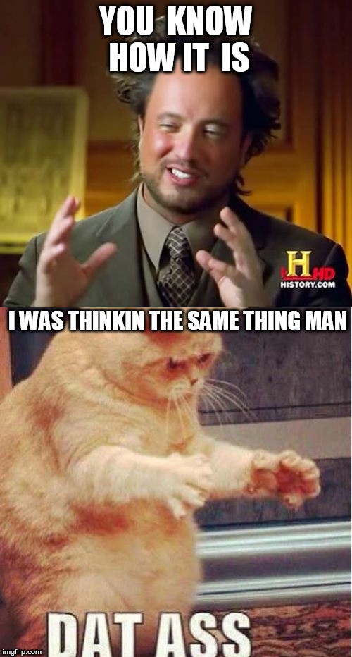 dat fat  azz! |  YOU  KNOW HOW IT  IS; I WAS THINKIN THE SAME THING MAN | image tagged in memes,ancient aliens,hello kitty,cat dat azz,dat cat,think the same | made w/ Imgflip meme maker