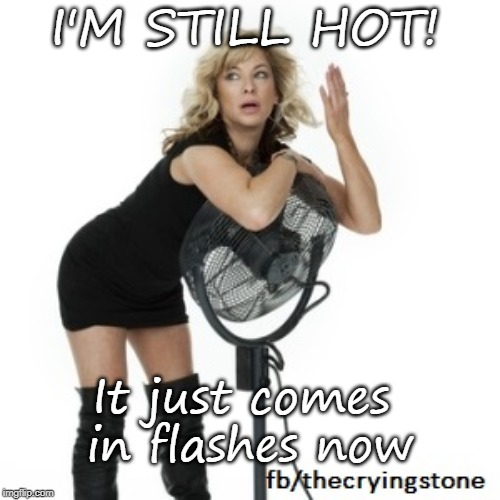 I'M STILL HOT! It just comes in flashes now | image tagged in menopause | made w/ Imgflip meme maker