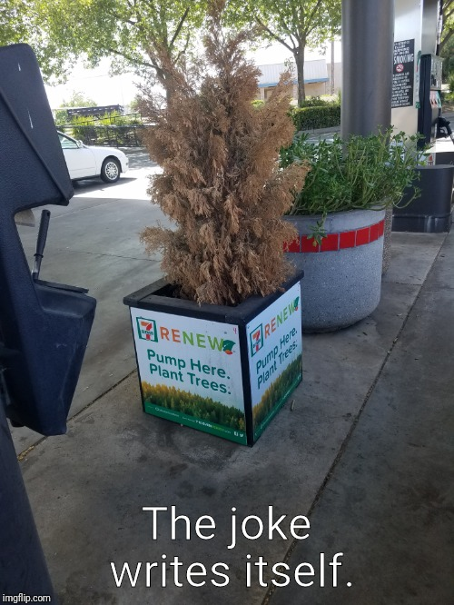Adds gone wrong | The joke writes itself. | image tagged in tree hugger | made w/ Imgflip meme maker