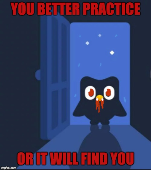 YOU BETTER PRACTICEvampire bird | YOU BETTER PRACTICE OR IT WILL FIND YOU | image tagged in duolingo bird | made w/ Imgflip meme maker