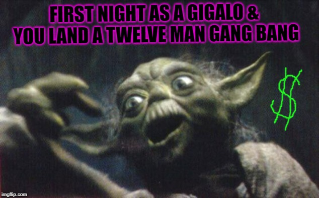 http://www.reocities.com/Area51/Meteor/9836/yoda/yodafunface2.jp | FIRST NIGHT AS A GIGALO & YOU LAND A TWELVE MAN GANG BANG | image tagged in http//wwwreocitiescom/area51/meteor/9836/yoda/yodafunface2jp | made w/ Imgflip meme maker