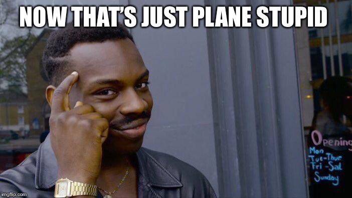 Roll Safe Think About It Meme | NOW THAT'S JUST PLANE STUPID | image tagged in memes,roll safe think about it | made w/ Imgflip meme maker