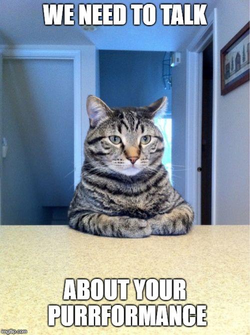 Take A Seat Cat Meme - Imgflip