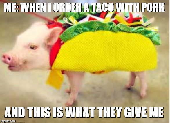 Requesting Such A Literal Thing. | ME: WHEN I ORDER A TACO WITH PORK AND THIS IS WHAT THEY GIVE ME | image tagged in pig,taco,literal meme,porky pig,why so serious | made w/ Imgflip meme maker