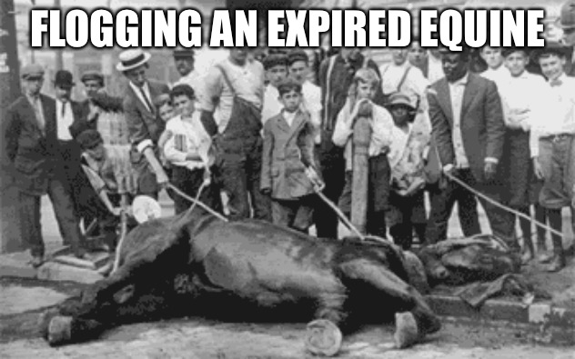 Flogging an Expired Equine | FLOGGING AN EXPIRED EQUINE | image tagged in beating a dead horse | made w/ Imgflip meme maker
