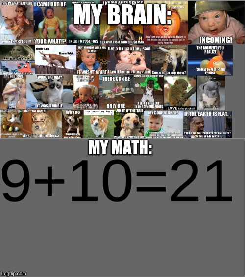 MY BRAIN: MY MATH: | image tagged in funny,xd | made w/ Imgflip meme maker