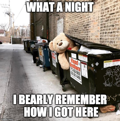 trashy bear |  WHAT A NIGHT; I BEARLY REMEMBER HOW I GOT HERE | image tagged in large stuffed bear,teddy,trash,dumpster | made w/ Imgflip meme maker