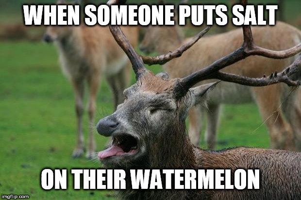 Doing that is just wrong. And stupid. Change my mind. | WHEN SOMEONE PUTS SALT ON THEIR WATERMELON | image tagged in disgusted deer,watermelon,eating,fruit | made w/ Imgflip meme maker