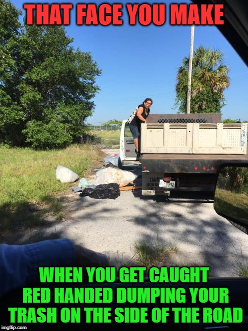 Because it just isn't nasty enough out there right? Better muck it up just a little more! |  THAT FACE YOU MAKE; WHEN YOU GET CAUGHT RED HANDED DUMPING YOUR TRASH ON THE SIDE OF THE ROAD | image tagged in trash,nixieknox,memes,somepeople | made w/ Imgflip meme maker