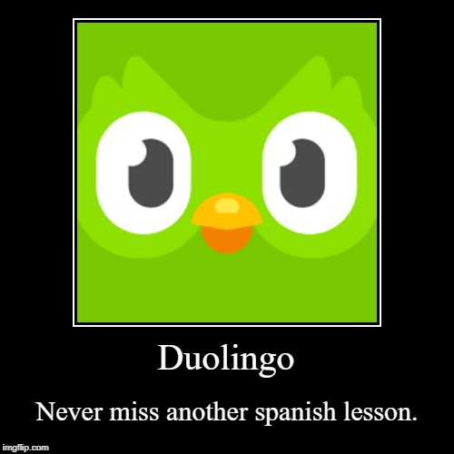 Duolingo | Never miss another spanish lesson. | image tagged in funny,demotivationals | made w/ Imgflip demotivational maker