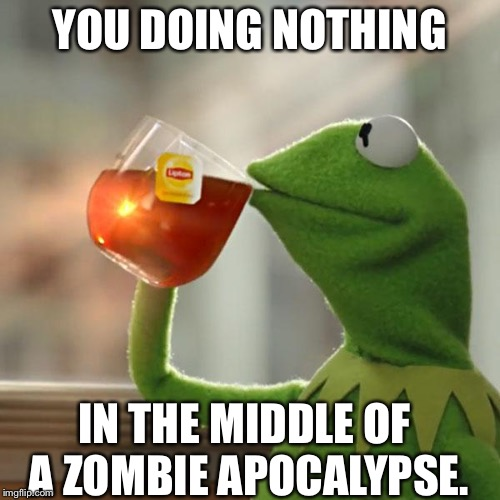 But That's None Of My Business Meme |  YOU DOING NOTHING; IN THE MIDDLE OF A ZOMBIE APOCALYPSE. | image tagged in memes,but thats none of my business,kermit the frog | made w/ Imgflip meme maker