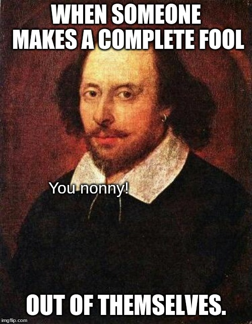 Nonny = Fool | WHEN SOMEONE MAKES A COMPLETE FOOL OUT OF THEMSELVES. You nonny! | image tagged in shakespeare,memes,fool,nonny,old english | made w/ Imgflip meme maker