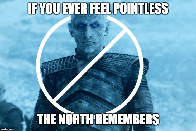 North Remembers Nothing | IF YOU EVER FEEL POINTLESS THE NORTH REMEMBERS | image tagged in pointless,night king,game of thrones,useless,lame,you know nothing | made w/ Imgflip meme maker