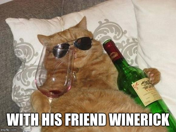 Funny Cat Birthday | WITH HIS FRIEND WINERICK | image tagged in funny cat birthday | made w/ Imgflip meme maker