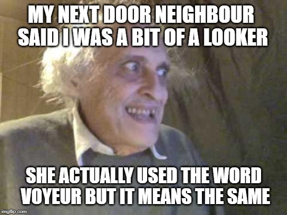 Old Pervert | MY NEXT DOOR NEIGHBOUR SAID I WAS A BIT OF A LOOKER SHE ACTUALLY USED THE WORD VOYEUR BUT IT MEANS THE SAME | image tagged in old pervert | made w/ Imgflip meme maker