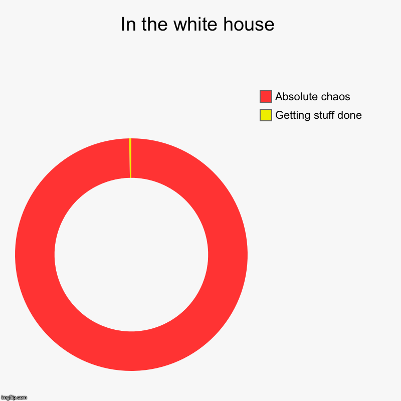 In the white house | Getting stuff done, Absolute chaos | image tagged in charts,donut charts | made w/ Imgflip chart maker