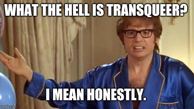 Austin Powers Honestly Meme | WHAT THE HELL IS TRANSQUEER? I MEAN HONESTLY. | image tagged in memes,austin powers honestly | made w/ Imgflip meme maker