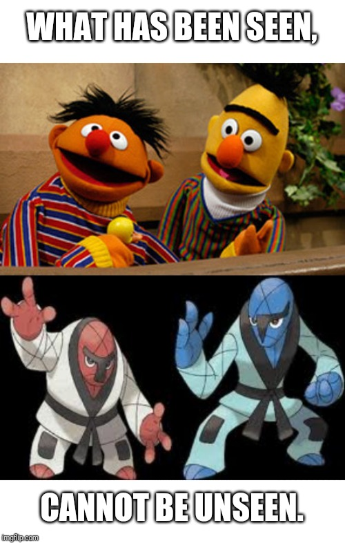 WHAT HAS BEEN SEEN, CANNOT BE UNSEEN. | image tagged in bert and ernie | made w/ Imgflip meme maker