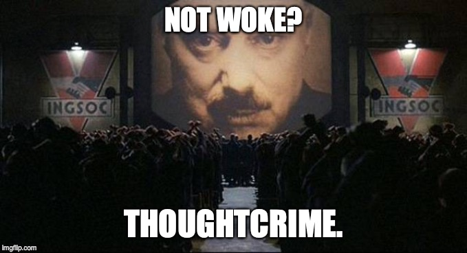 Big Brother 1984 | NOT WOKE? THOUGHTCRIME. | image tagged in big brother 1984,woke | made w/ Imgflip meme maker