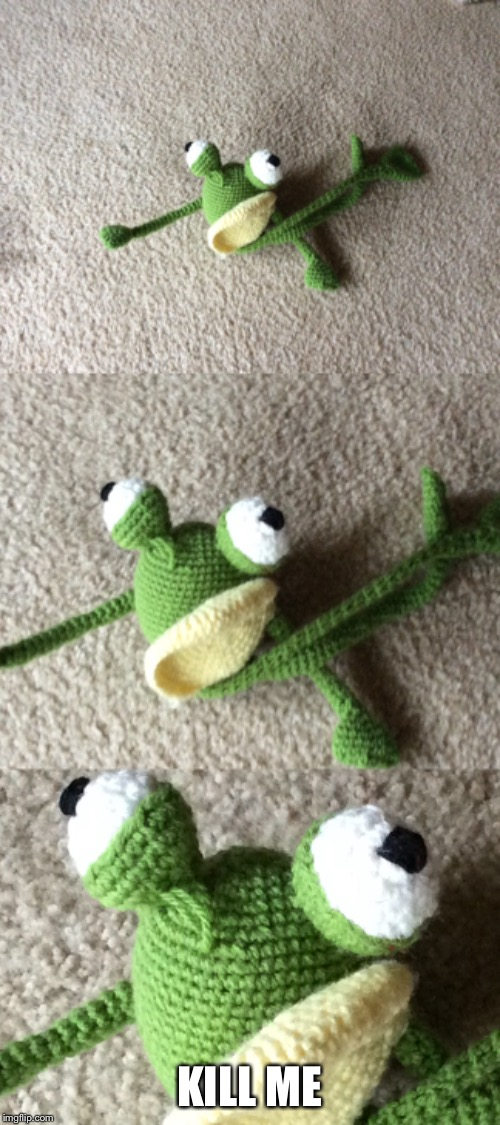 My grandma likes to make crochet animals. My dog likes them very much. | KILL ME | image tagged in frog,pain | made w/ Imgflip meme maker